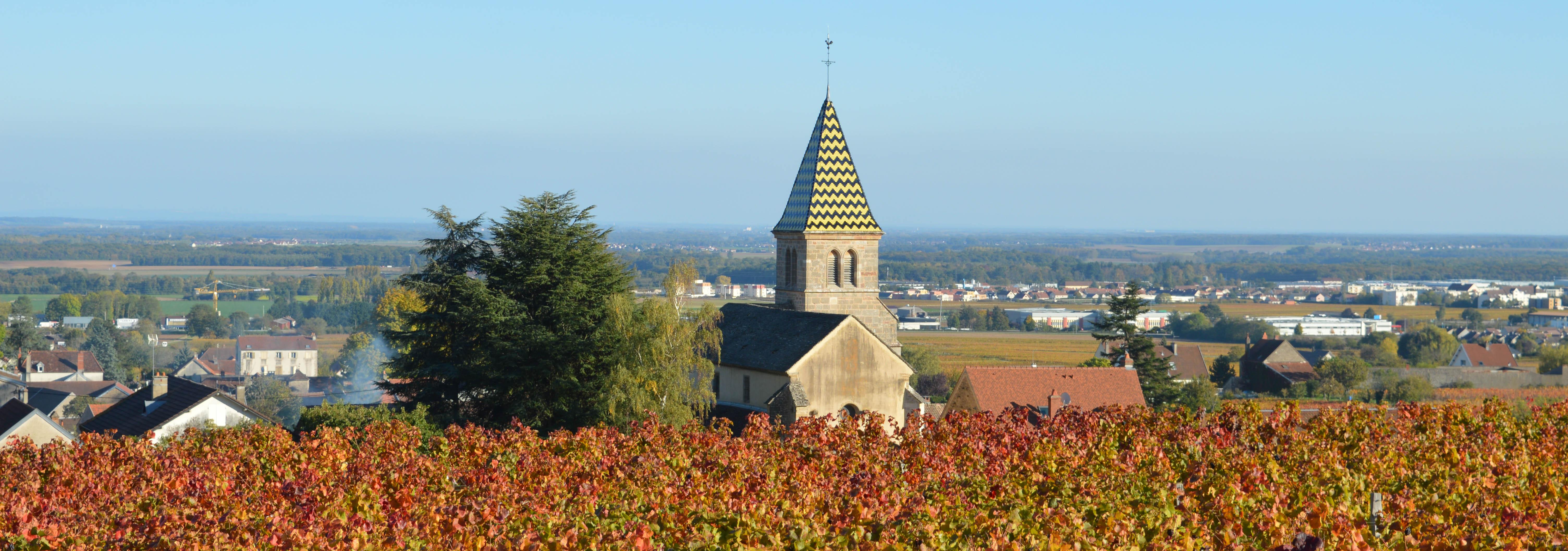 Communauté de communes de Gevrey-Chambertin et de Nuits-Saint-Georges
